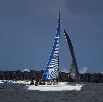 Paddling and Sailing by Bonita Hensley