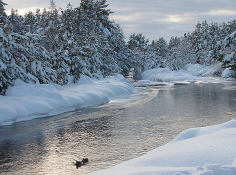 Paddling up the Snowy River by Jacqi Elmslie