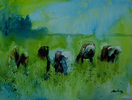 Paddy by Mohan Watercolours