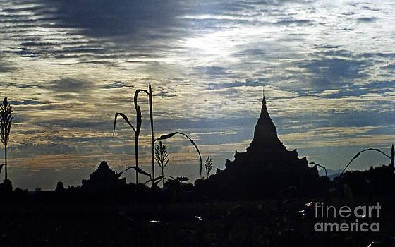 Pagan Burma by Scott Shaw