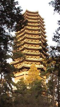 Alfred Ng - pagoda at Peking university