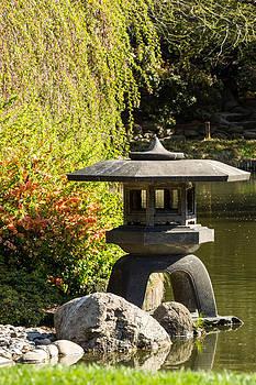 David Hahn - Pagoda at the Pond 2