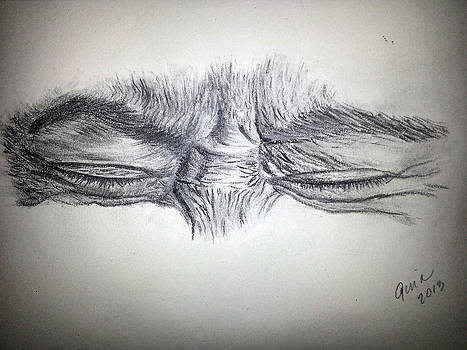 Pain and Sorrow by Gina Cordova