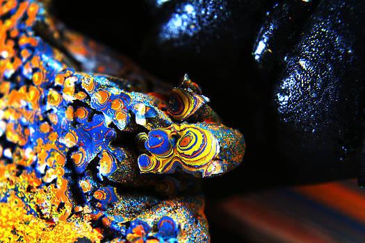 Scott Hovind - Paint Booth Geology 11