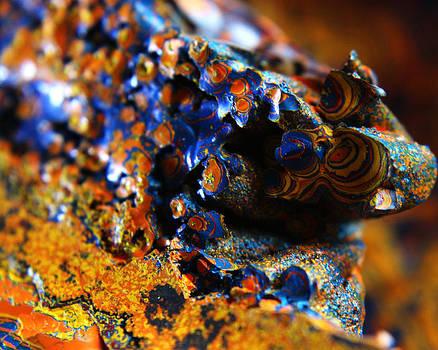 Scott Hovind - Paint Booth Geology 12