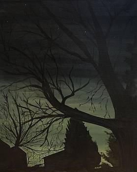 Paint the Night by Rachel Brisbois