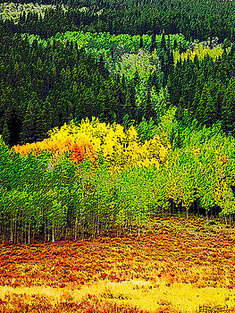 Painted Aspen by Ric Soulen