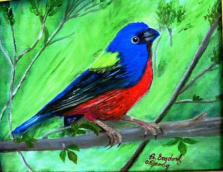 Painted Bunting by Betty and Kathy Engdorf and Bosarge