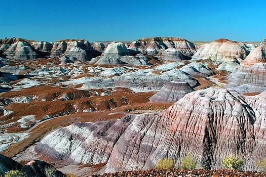 Painted Desert Arizona by Al Blount