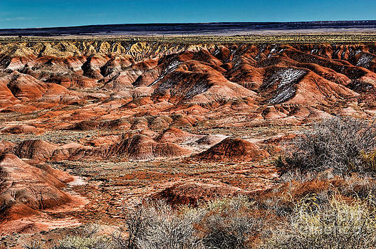 Jon Burch Photography - Painted Desert in Winter