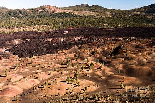 Adam Jewell - Painted Dune Landscape