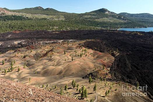 Adam Jewell - Painted Dunes Landscape