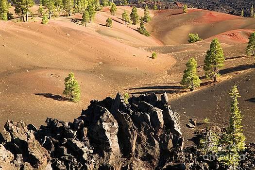 Adam Jewell - Painted Dunes Valley