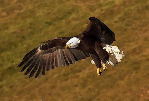 Lara Ellis - Painted Eagle 2