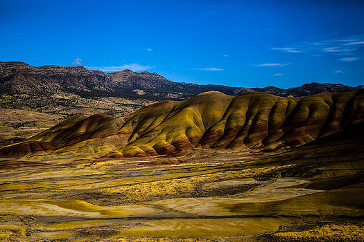 John Day National Monument 2 by Sally Bauer