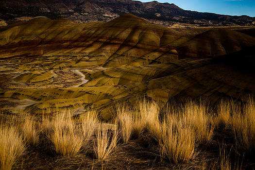 John Day National Monument 3 by Sally Bauer