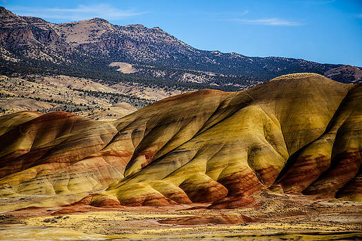 John Day National Monument 5 by Sally Bauer