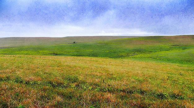 Eric Benjamin - Painted Hills