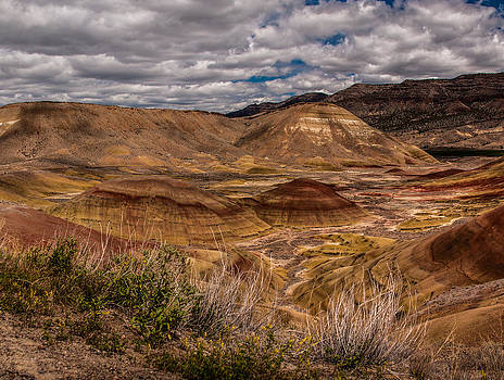 Painted Hills Unit #3 by Craig Pifer