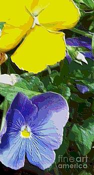 Painted Pansy by Annette Allman
