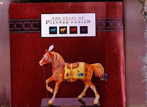 Anne-Elizabeth Whiteway - Painted Pony