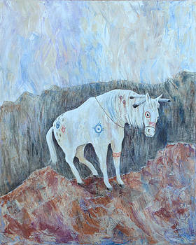 Painted Pony by Mr Dill