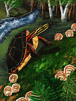 Jeanette K - Painted Turtle