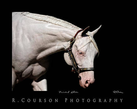 Painted White by Ryan Courson