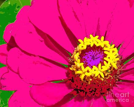 Painted Zinnia by Annette Allman