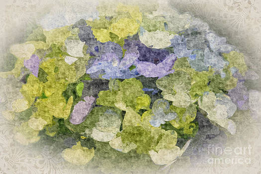 Beverly Claire Kaiya - Painterly Hydrangea with Vintage Brocade Vignette