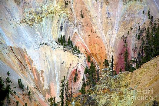 Painter's point Yellowstone  by Terry Horstman