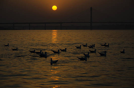 Painting a golden picture by Rohit Chawla
