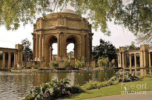 Palace of Fine Arts - S.F. by Amy Fearn
