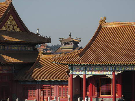 Alfred Ng - palaces at Forbidden city