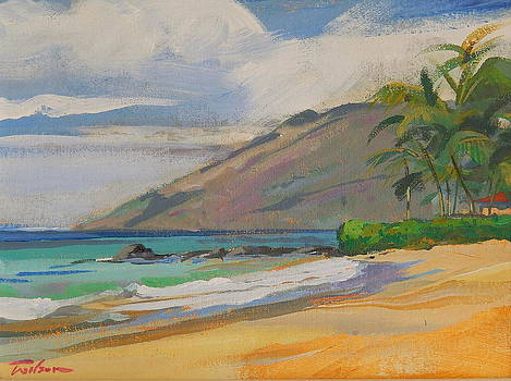 Palauea Beach by Ron Wilson