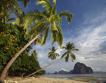 Palawan in Philippines by Tim Fitzharris