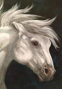 Pale Grey Horse by K Simmons Luna