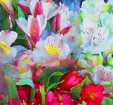 Palette of Nature by Steven Huszar