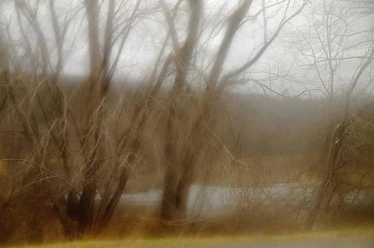 Palisades Dream by Eric Ferrar