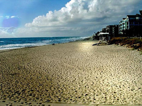 Palm Beach  Florida by Judy Paleologos