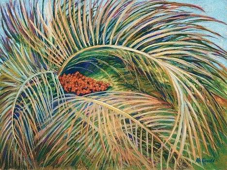 Palm Berries by Tricia Mcdonald