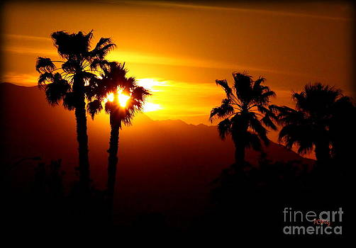 Patrick Witz - Palm Desert Sunset