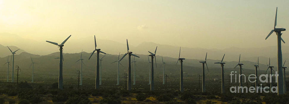 Gregory Dyer - Palm Desert Wind Mills
