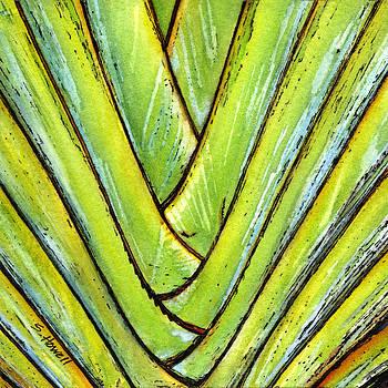 Palm Leaf by Sandi Howell
