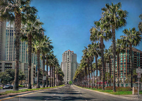 Palm-Lined Parkway by Hanny Heim
