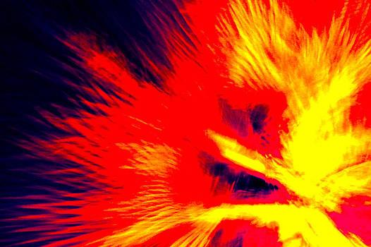 Palm on Fire I by Carl Christensen