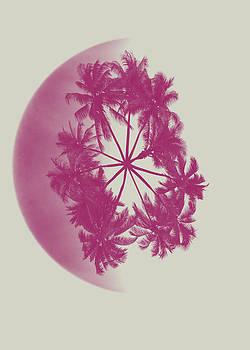 Palm on the Moon by Renato Armignacco