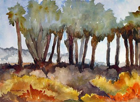 Palm Preserve V by John Ressler