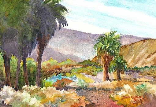 Palm Preserve VI by John Ressler