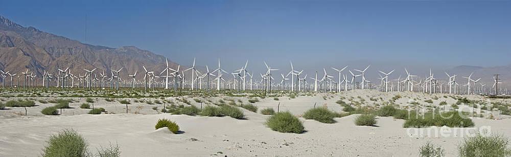 David Zanzinger - Palm Springs green energy Wind Turbines Farm San Gorgonio pass Coachella Valley